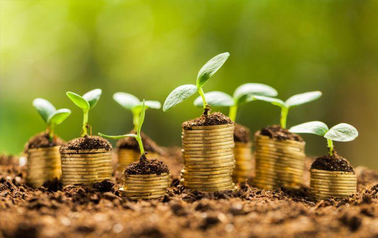 как инвестировать в корпоративные облигации